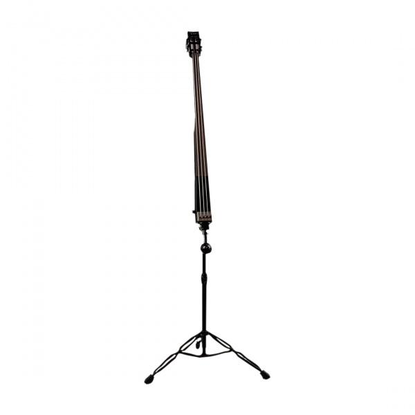 DEAN Paceb CBK Upright pace